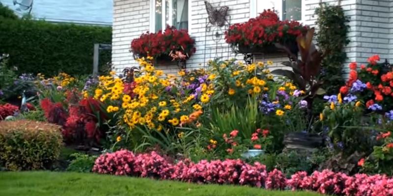 Рабатки клумбы и цветники на даче своими руками фото 586