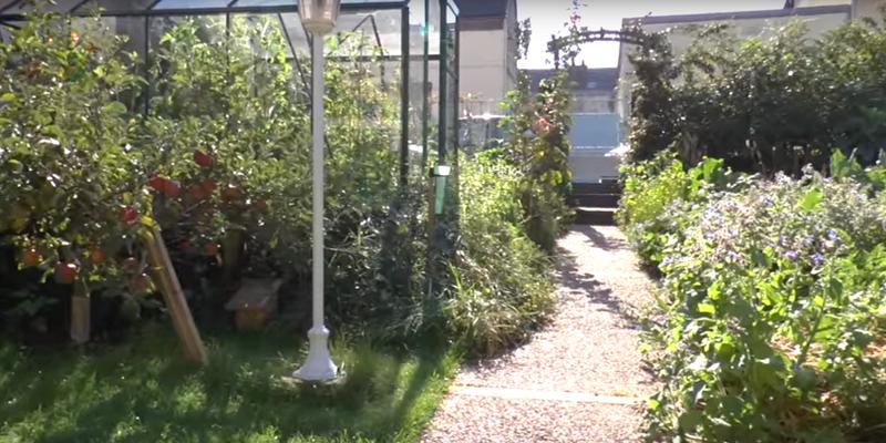 Jardin potager d finition et conseils for Jardin definition